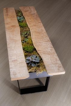 I made a succulent coffee table. : succulents