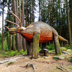 In Bad Leonfelden (Mühlviertel) gibt es viele tolle Wanderwege! Ich bin regelmäßig dort und genieße die wunderbare Natur. Ein besonderes Highlight ist der Erlebnisweg Moorwald - hier gibt es viel zu entdecken :-) Outdoor Decor, Hiking Trails, Communities Unit, Tourism, Road Trip Destinations, Tours