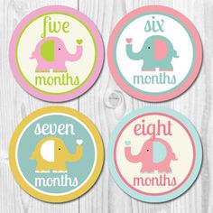 Baby Monthly Stickers, Milestone Stickers, Put on white onesie ® for photo Girls Baby Monthly Milestones, Monthly Baby, Baby Month Stickers, Baby Memories, Babies First Year, Baby Shirts, Baby Elephant, Baby Month By Month, Personalized Baby