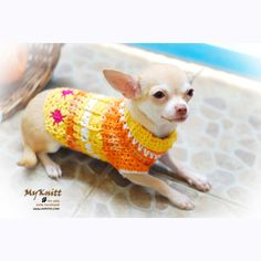 Dog Clothes Crochet Pets Apparel Chihuahua Clothing orange flower D811 - Free Shipping. $33.00, via Etsy.