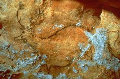 The Altamira cave paintings Ancient Art, Ancient History, Art Pariétal, Paleolithic Art, Human Art, Prehistory, Aboriginal Art, Pablo Picasso, Cave Painting