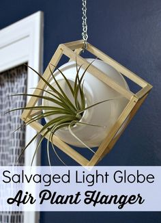 Learn how to turn a discarded light globe into a chic hanging air plant container. Full tutorial. #airplants #houseplants #upcycled