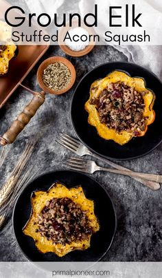 This ground elk stuffed acorn squash is a hearty fall dish that's full of delicious seasonal flavors. Made with a rich elk meat blend that's combined with wild rice, maple syrup, cranberries, and seasonings. Elk Meat Recipes, Wild Game Recipes, Venison Recipes, Cooking Recipes, Ground Elk Recipes, Ground Venison, Acorn Squash Recipes, Fall Dishes, Wild Rice