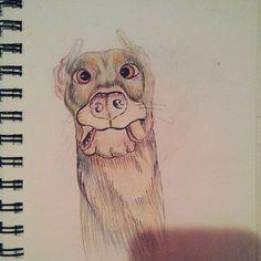 #scareddog #sketchbook