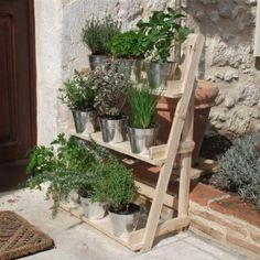 Plant Theatre - Three tier Herb & Plant Stage in Natural Wood. Ideal Gardeners Gift: Amazon.co.uk: Garden & Outdoors