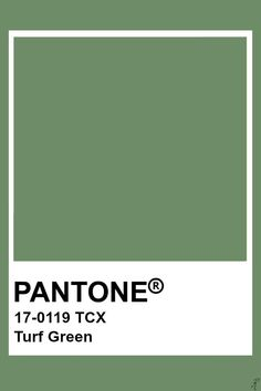 Pin by Color Wheel on Green: Green Grays ( Tones and Shades Mixes . Pantone Swatches, Color Swatches, Pantone Tcx, Pantone Colour Palettes, Pantone Color, Colour Pallete, Colour Schemes, Green Pallete, Color Trends