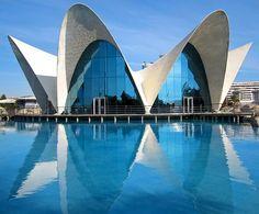 SPAIN/Valencia. City of Arts and Sciences(oceanografico building). Architect  Santiago Calatrava.