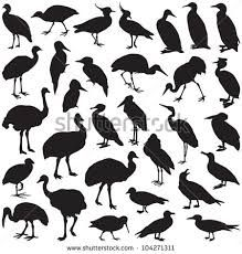 Image result for free silhouette of penguin