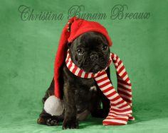 I promise I was good Santa!