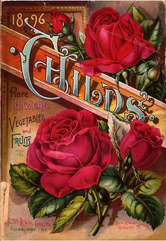 - Childs: Rare Flowers, Vegetables, and Fruits. 1896 issue of a nursery magazine. :: Apples -CONTENTdm - Childs: Rare Flowers, Vegetables, and Fruits. 1896 issue of a nursery magazine. Decoupage Vintage, Vintage Diy, Vintage Rosen, Vintage Labels, Vintage Ephemera, Vintage Postcards, Rare Flowers, Vintage Flowers, Beautiful Flowers