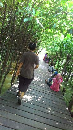 Wisata Mangrove Wonorejo