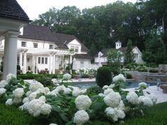 A Classic Country White Garden. by Deborah Cerbone Associates, Inc.- dreamy house, pool and garden