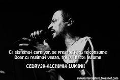 Rap Romanesc: Cedry2k-Alchimia Luminii Rap, Hip Hop Quotes, Inspirational Quotes, Facts, Life, Life Coach Quotes, Inspiring Quotes, Wraps, Quotes Inspirational