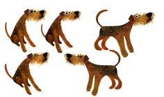 Drawings of my welsh terrier Stig. My wife commissioned these from illustrator Brendan Wenzel for my birthday. http://brendanwenzel.info