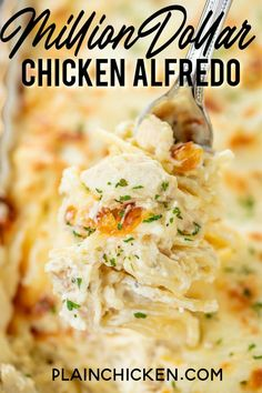 Million Dollar Chicken Alfredo – seriously delicious! Chicken, pasta, alfredo sauce and 4 cheeses! The BEST chicken alfr Pollo Alfredo, Pasta Alfredo, Alfredo Sauce, Easy Chicken Recipes, Pasta Recipes, Dinner Recipes, Cooking Recipes, Great Recipes, Pasta Dishes