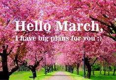 The beauty of Spring is almost here!!!