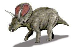 Triceratops (version)