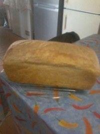 geen knie melkbrood