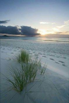 Just calling for an evening beach walk...