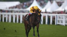 Champion Lady Aurelia due to visit Curlin for a star-studded first date Travers Stakes, Preakness Stakes, Royal Ascot, Queen Mary, Horse Racing, Champion, Horses, Stars, Lady