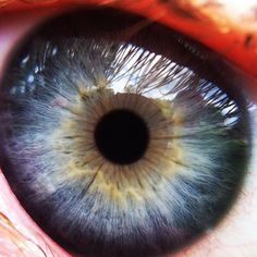 Macro of my daughters eye ... Taken with iphone  © Brittaney Allen