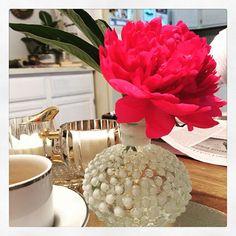 RARA AVIS Boutique @raraavisboutique Instagram photos | Websta Rara Avis, Photos, Designers, Table Decorations, Boutique, Random, Instagram, Home Decor, Pictures