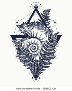 Nautilus shell prehistoric tattoo art. Ancient ammonite in the triangle t-shirt design. Ancient fossils, symbol of paleontology, science, education. Trilobites, ammonite and fern tattoo