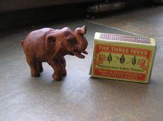 Slon pro radost
