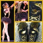 Decorated pointe shoes to match a beautiful costume worn on stage.
