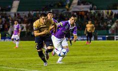 -El cuadro felino ha tenido un buen paso en la Liga MX, nada comparable con su paso en la Copa MX