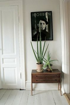 Small dresser and green plants.