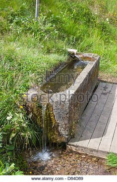Water troughs with clean clear drinking water - Stock Image