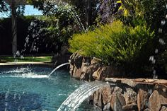 One of the local pools we've worked on here in Northern California's Bay Area Swimming Pool Repair, Swimming Pools, Aqua Pools, Northern California, Bay Area, The Locals, Waterfall, Gallery, Outdoor Decor