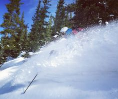 Well that was pretty good! Frank finding perfect pow in perfect trees today! And met some really nice people too. Great vibe here at Monarch Pass.  #ski #skiing #14erskiers #monarchpass #backcountryskiing #backcountry #yayskiing @blackdiamond @patagonia @intuitionliners @girosnow @crested_butte_is_home
