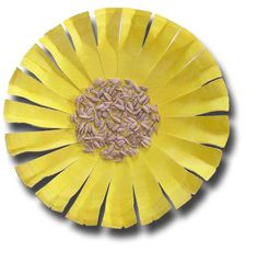 Google Image Result for http://www.papercraftsforchildren.com/wp-content/uploads/2010/05/paper-plate_flower3-seed.jpg