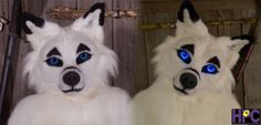 Kiasha's Fuzzy Face - by Huskypaws  USES CHC CANINE RESIN MASK + NOSE