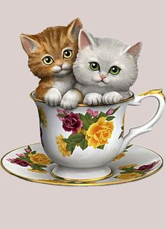 Cuddly kittens sweeten up China-inspired teacup with bright, twinkling eyes and hand-etched fur detailing. Hand-brushed golden trim and glaze coating. Animals And Pets, Baby Animals, Cute Animals, Kitten Love, I Love Cats, Cute Kittens, Cats And Kittens, Kitty Cats, Teacup Kitten