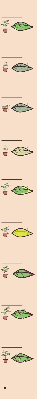 O que as folhas da sua planta estão 'dizendo' - Nexo Jornal
