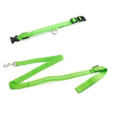 GEARONIC TM Extra Large LED Lights COLOR Light Up Pet Dog Cat Night Safety Waterproof Nylon Neck Adjustable Collar  Leash Bundle  Green >>> See this great product.(This is an Amazon affiliate link and I receive a commission for the sales)