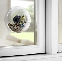 Buy Eva Solo: Window Bird Feeder online and save! Enjoy a myriad of feeding garden birds just outside your window. This elegant glass bird feeder will mount directly onto your window pane. Small Garden Birds, Outdoor Lighting, Outdoor Decor, Glass Birds, Little Birds, Bird Species, Glass Domes, Small Gardens, Kugel