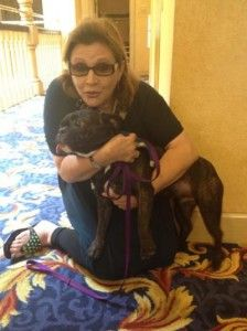 Carrie Fisher with her therapy dog, Gary.  Carrie talks about mental illness and career.