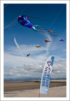 Kites on the beach at Morecombe Go Fly A Kite, Kite Flying, Wind Socks, Dragon Kite, Kite Designs, The Kite Runner, Unusual Animals, Learn To Fly, Arte Popular