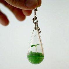 DIY Growing Pet Plant Seed Bonsai Phone Strap Charm Dangle