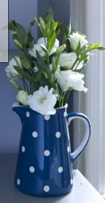 Floral Arrangement ~ blue and white dot pitcher with white flowers