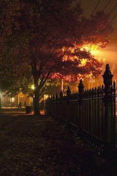 Halloween Night, Salem, Massachusetts    For More 1,000,000 Pictures