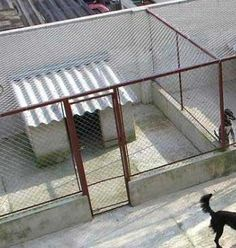 Como Construir um Canil (1) Dog Kennel Designs, Diy Dog Kennel, Cheap Outdoor Dog Kennels, Shelter Dogs, Animal Shelter, Luxury Dog House, Dog Backyard, Iron Gate Design, Dog House Plans