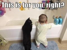 Funny Cat & Toddler at Bathtime