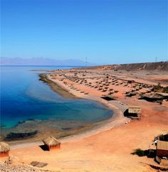 Volunteer and learn diving in the Red Sea - workaway.info Spanish, English Helping with Tourists,  Help in the house,  General Maintenance,  Cooking / shopping