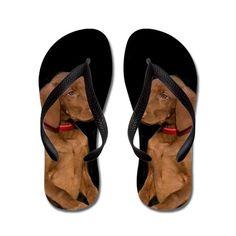 1663f3f777535c Vizla dog Flip Flops. Pool ShoesCustom Flip FlopsRubber Flip FlopsBeach  SandalsDog ...