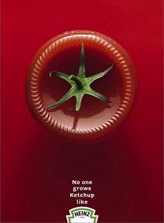 Heinz #advertising - no one grows ketchup like heinz